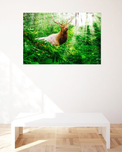 outdoorsman-wildlife-print-for-sale-gift