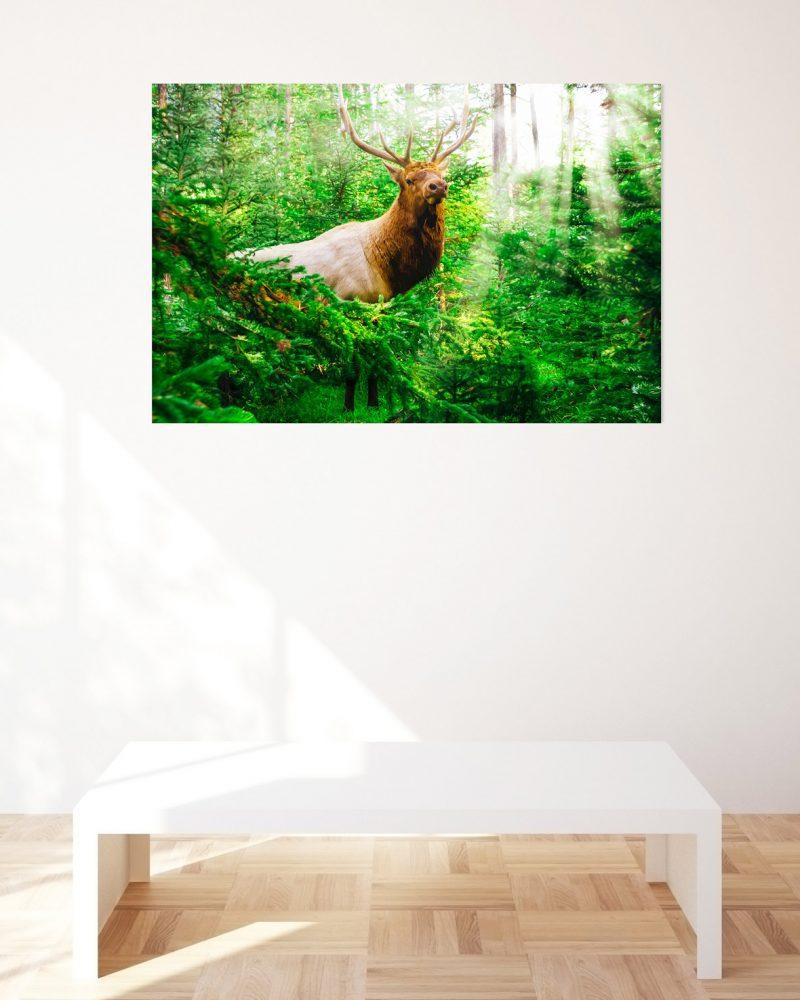 outdoorsman-wildlife-print-for-sale-gift