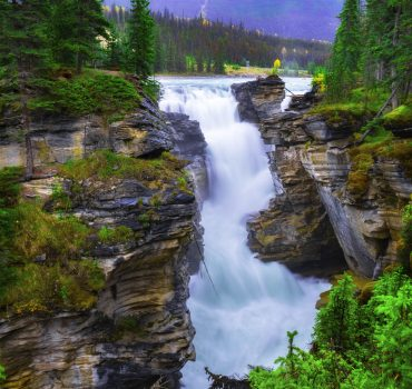 Beautiful Waterfall In Lush Rainforest
